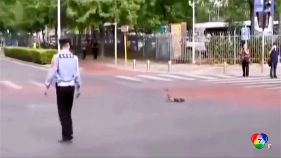 ตำรวจจีนคุ้มครองเป็ดเดินข้ามถนน