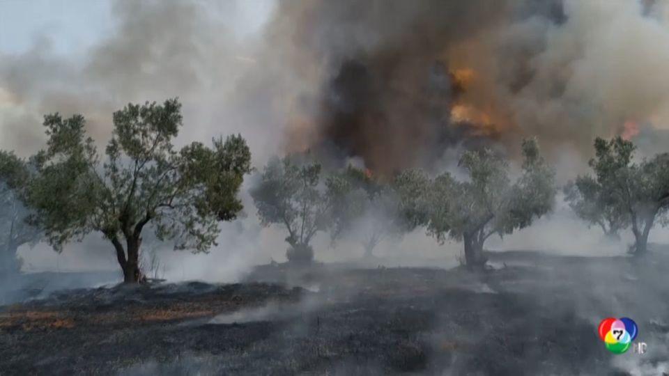 เกิดไฟป่ารุนแรงในกรีซ ขณะที่เด็กหลายร้อยคนกำลังตั้งแคมป์เข้าค่ายฤดูร้อน