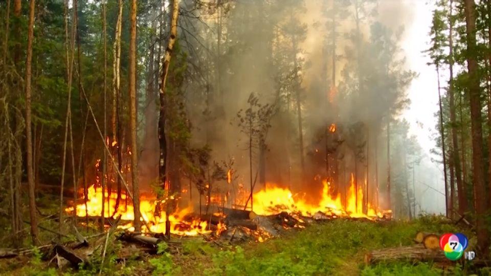 รัสเซียส่งเจ้าหน้าที่เร่งดับไฟป่าในไซบีเรีย