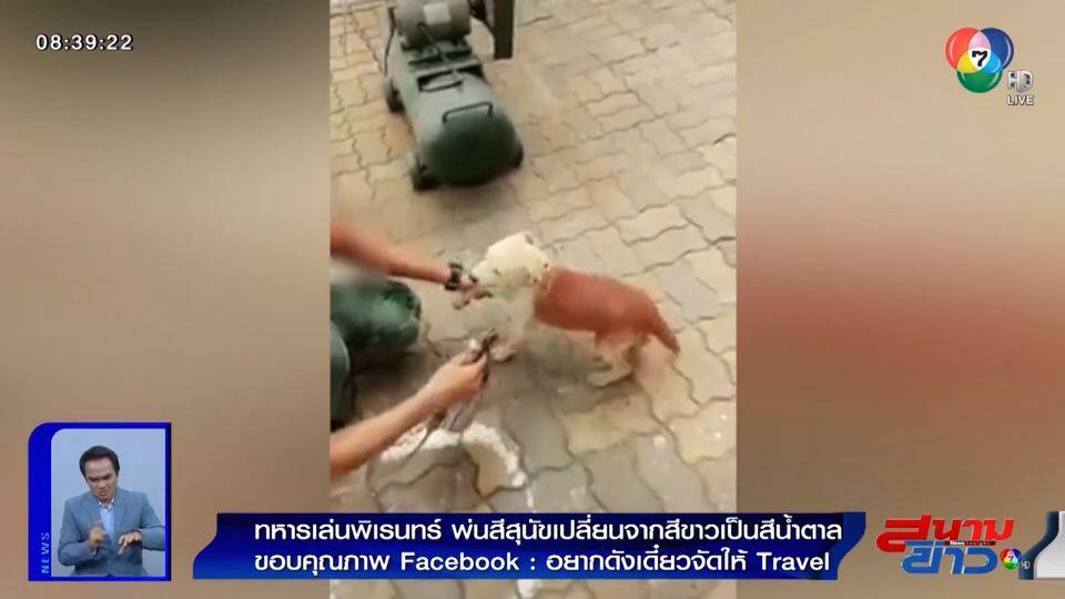 ภาพเป็นข่าว : ชาวเน็ตสวดยับ! ทหารหนุ่มเล่นพิเรนทร์ พ่นสีลูกสุนัข จากสีขาวเป็นสีน้ำตาล