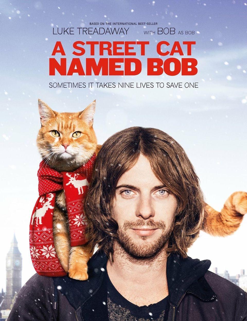 """ภ.ฝรั่ง """"บ๊อบ แมว เพื่อน คน"""" (A STREET CAT NAMED BOB)"""