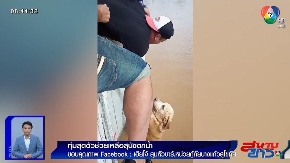 ภาพเป็นข่าว : ทุ่มสุดตัว! พลเมืองดีห้อยหัวจากสะพาน ช่วยสุนัขตกน้ำ จ.สุโขทัย