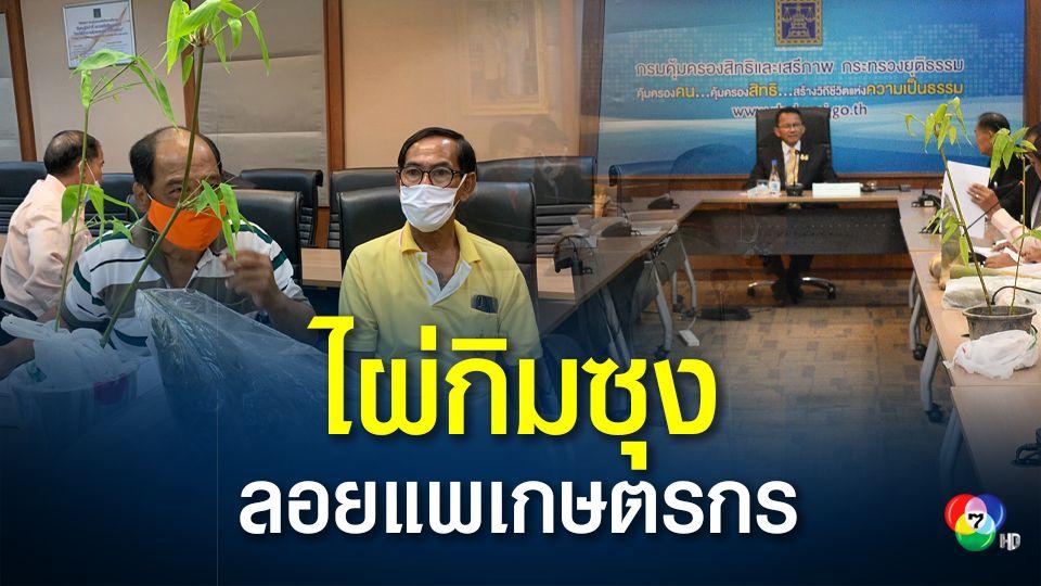 ร้องสอบโครงการปลูกไผ่กิมซุง ลอยแพเกษตรกร เสียหาย 21 ล้าน