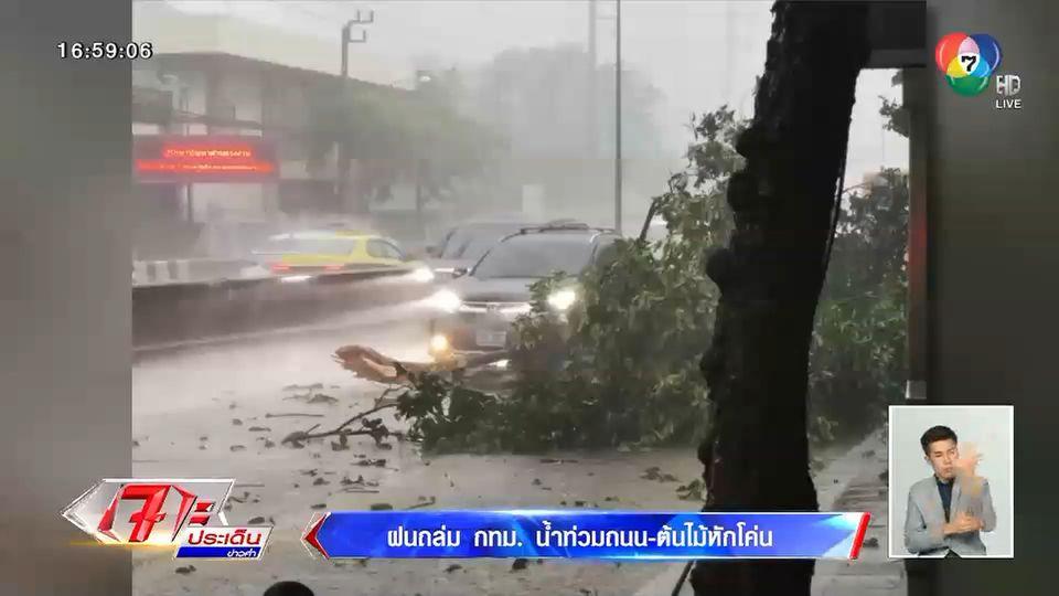 ฝนถล่ม กทม. ถนนบางสายถูกน้ำท่วมขัง – ต้นไม้หักโค่น