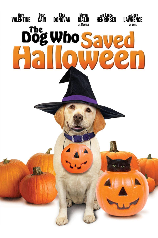 """ภ.ฝรั่ง """"บิ๊กโฮ่ง ซูเปอร์หมา ป่วนฮาโลวีน""""  (THE DOG WHO SAVED HALLOWEEN)"""