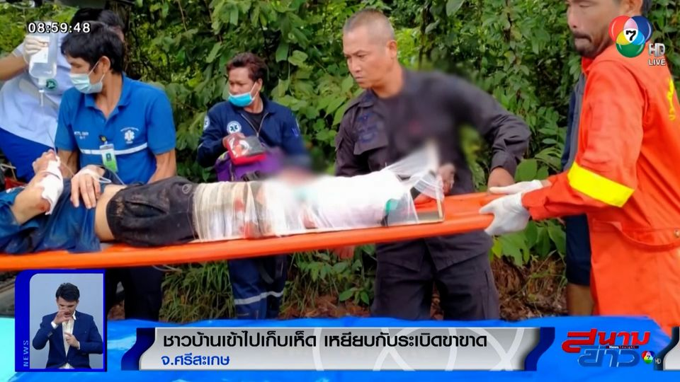 ภาพเป็นข่าว : ชาวบ้านเข้าป่าไปเก็บเห็ด เหยียบกับระเบิดขาขาด จ.ศรีสะเกษ