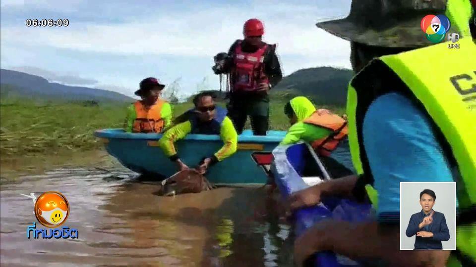 น้ำมูลยังท่วม อ.พิมาย บ้านเอื้ออาทรถูกท่วมกว่า 800 หลัง