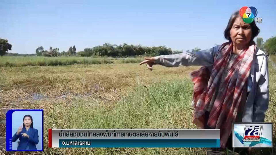 น้ำเสียชุมชนไหลลงพื้นที่การเกษตร เสียหายนับพันไร่ จ.มหาสารคาม