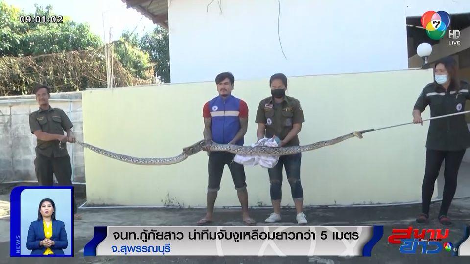 ภาพเป็นข่าว : จนท.กู้ภัยสาว นำทีมจับงูเหลือมยาวกว่า 5 เมตร จ.สุพรรณบุรี