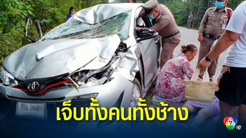 แม่ลูกขับรถจะไปทำบุญ เจอช้างป่าเดินตัดหน้ารถ พุ่งชนช้างอย่างจัง เจ็บทั้งคนทั้งช้าง