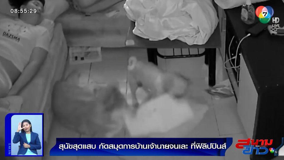 ภาพเป็นข่าว : สุนัขสุดแสบ กัดสมุดการบ้านเจ้านายจนเละ ที่ฟิลิปปินส์
