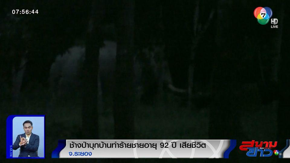 ช้างป่าบุกบ้านทำร้ายชายอายุ 92 ปี เสียชีวิต จ.ระยอง