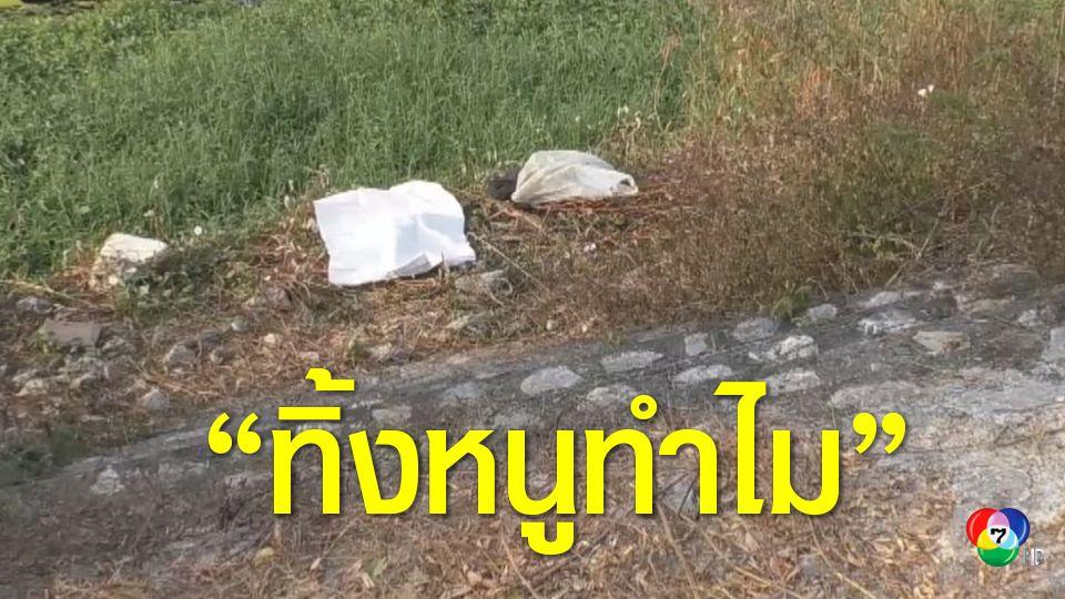 พบศพทารก ถูกทิ้งป่าใต้สะพาน