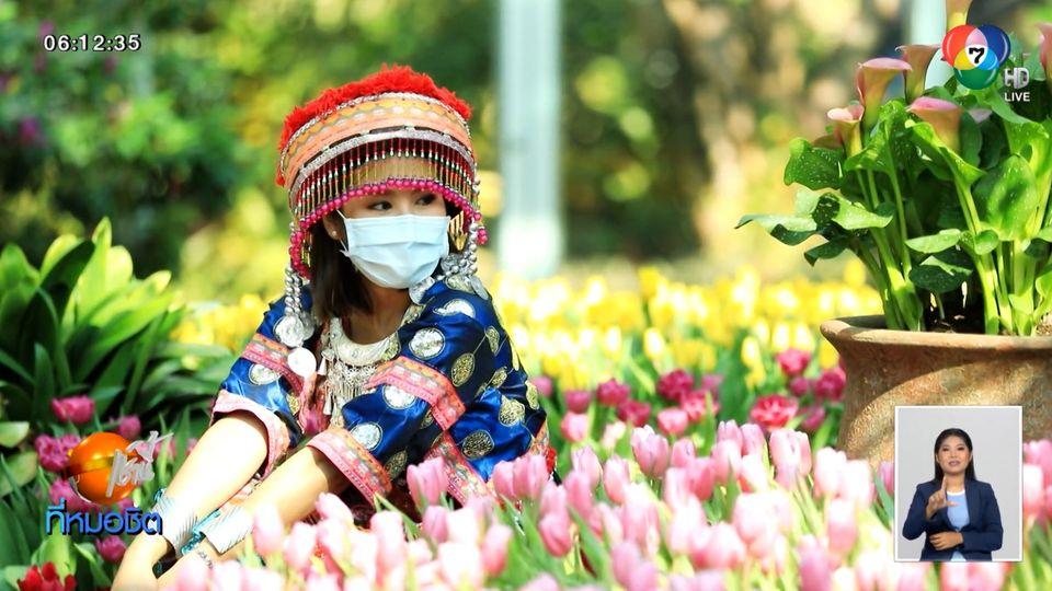 เช้านี้วิถีไทย : เทศกาลชมสวน ความสุข...จากยอดดอย อุทยานหลวงราชพฤกษ์ จ.เชียงใหม่