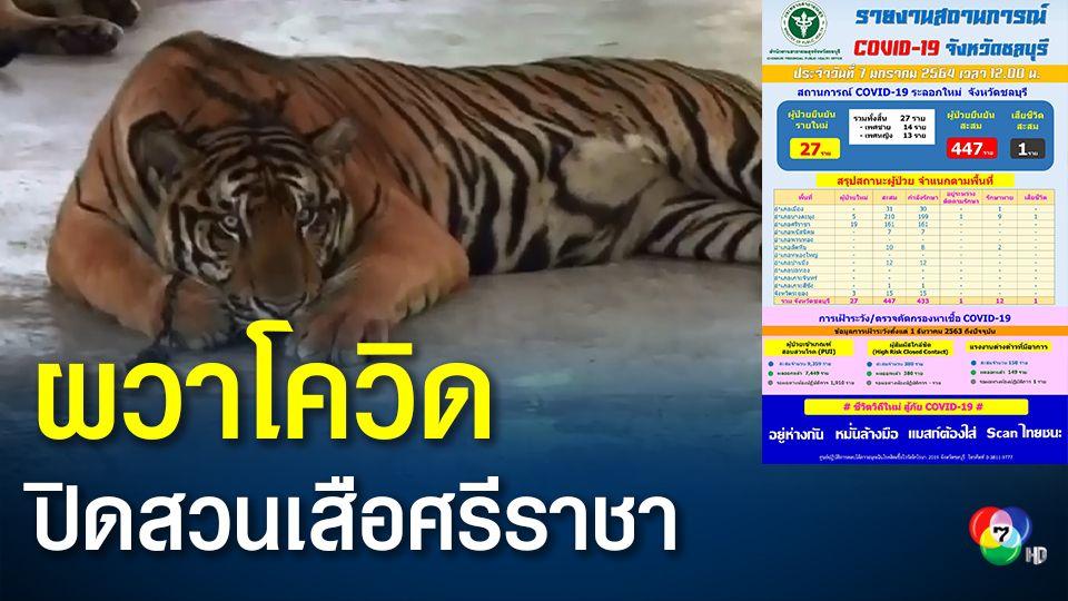 ชลบุรีติดเชื้อเพิ่ม 27 คน ยอดสะสม 447 คน สวนเสือศรีราชาปิดรับนักท่องเที่ยว