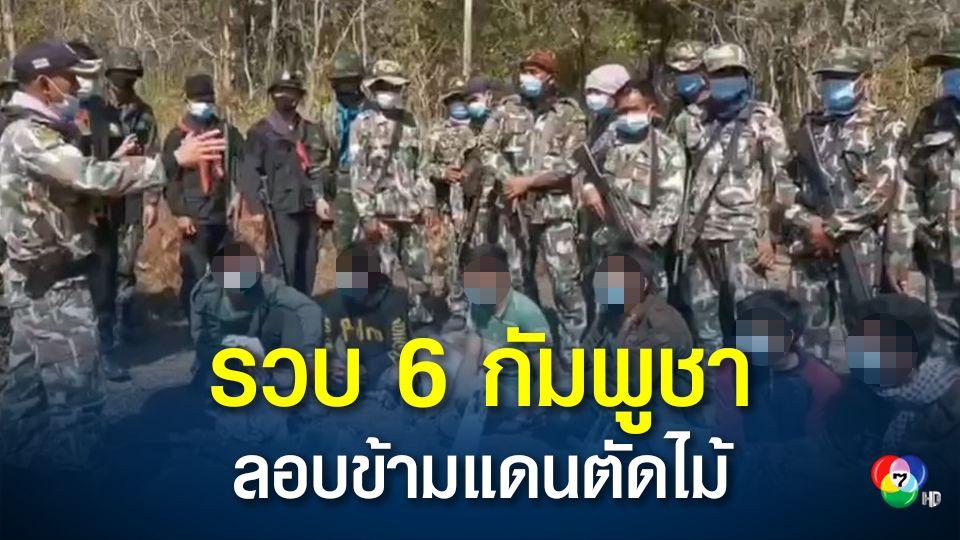 รวบ 6 ชาวกัมพูชา ลอบเข้าไทยตัดไม้ป่า