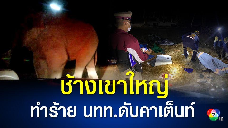 อุทยานแห่งชาติเขาใหญ่สั่งปิดลานกางเต็นท์ผากล้วยไม้ หลังช้างป่าบุกทำร้ายนักท่องเที่ยวเสียชีวิต