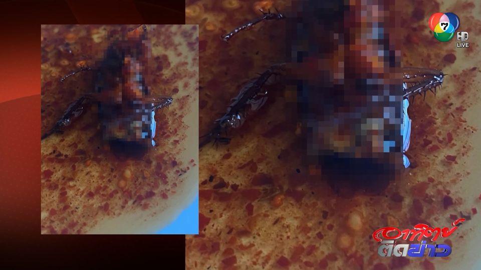 แทบอาเจียน! แมลงสาบโผล่ในข้าวหมูทอด