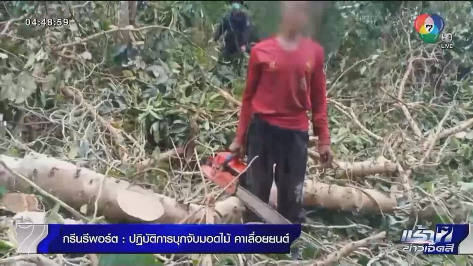 Green Report : ปฏิบัติการบุกจับมอดไม้ คาเลื่อยยนต์