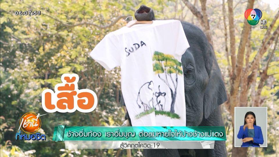 เช้านี้วิถีไทย : ช้างอิ่มท้อง เราอิ่มบุญ ต่อลมหายใจให้ปางช้างแม่แตง สู้วิกฤตโควิด-19