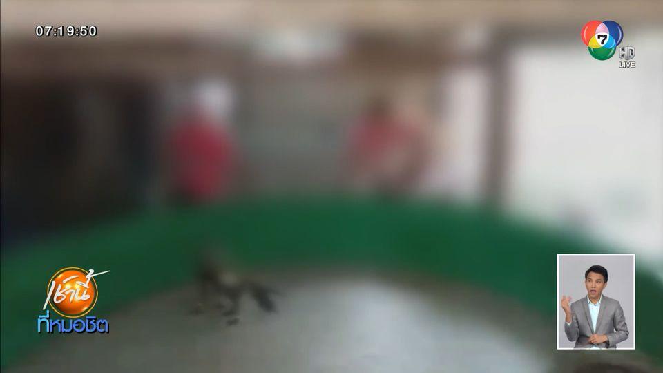 บุกจับบ่อนพนันชนไก่ กลางเมืองเพชรบุรี ฝ่าฝืน พ.ร.ก.ฉุกเฉิน ไม่สนโควิด-19