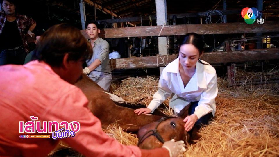 พอร์ช-นาว เปิดประสบการณ์ใหม่ เข้าฉากทำคลอดม้า ในละคร วงเวียนหัวใจ