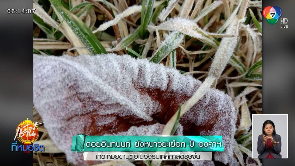 ดอยอินทนนท์ ยังหนาวยะเยือก 0 องศาฯ เกิดเหมยขาบต่อเนื่องรับเทศกาลตรุษจีน