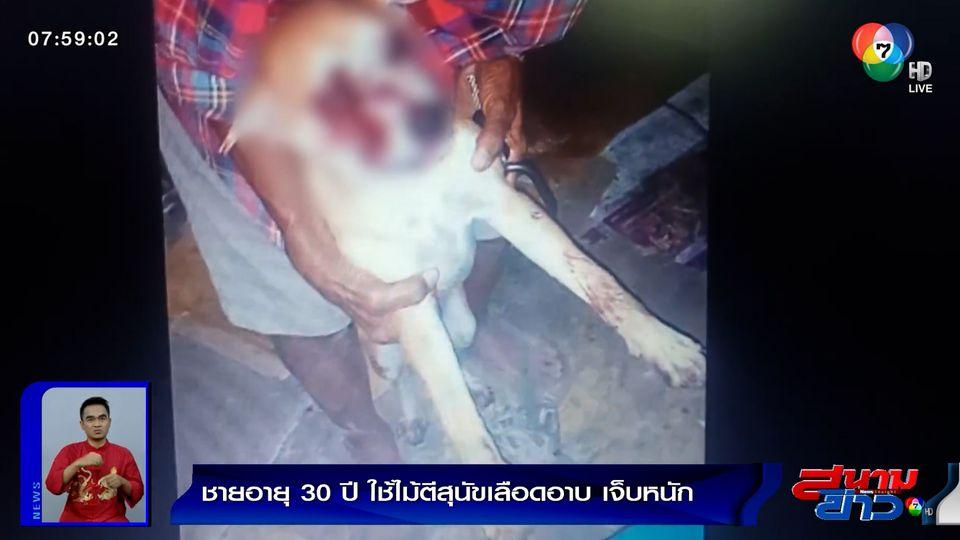 ชายอายุ 30 ปี ใช้ไม้ตี-แทงตาสุนัขเลือดอาบ เจ็บสาหัส คาดเสพยาจนหลอน