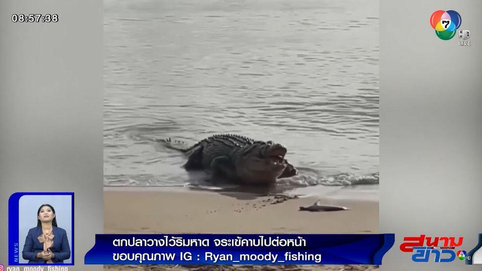 ภาพเป็นข่าว : เจ็บใจ! ตกปลาวางไว้ริมหาด จระเข้คาบไปกินต่อหน้า