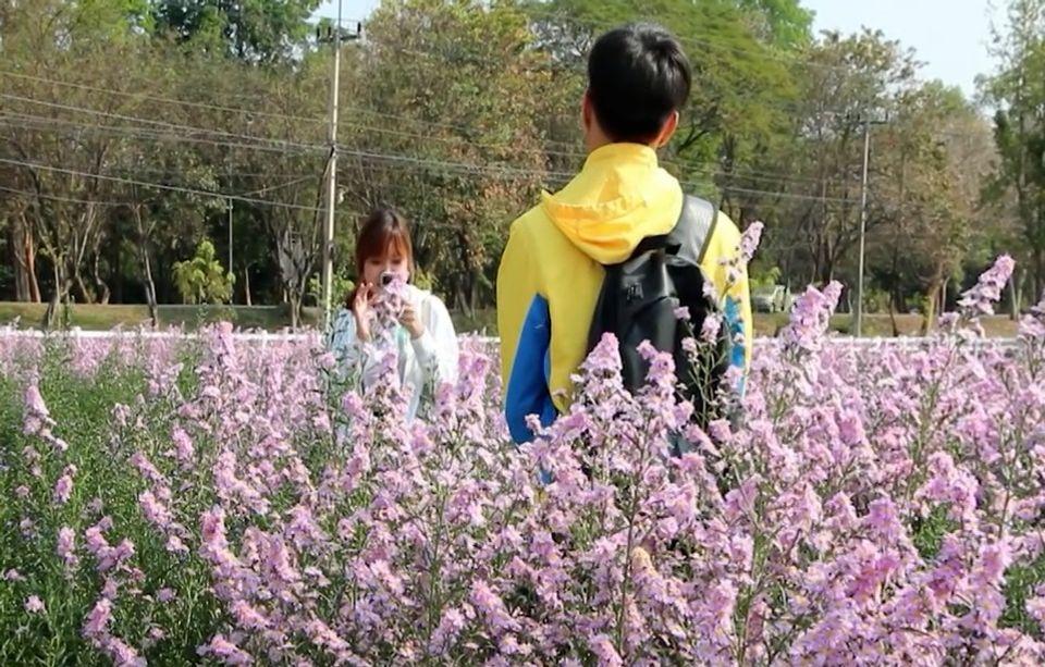 ชวนชมสวนดอกไม้สวยงาม หน้าอุทยานเกษตร ม.ขอนแก่น