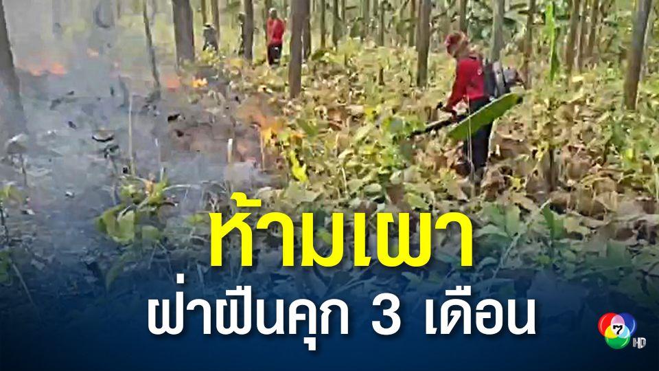 ประกาศห้ามเผาป่าฝ่าฝืนคุก 3 เดือน ปรับ 25,000 บาท