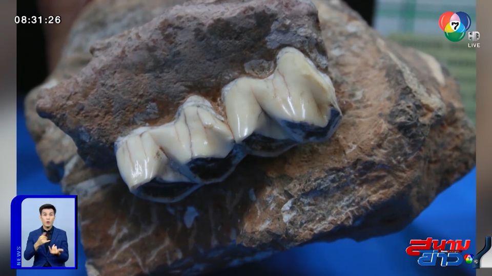 อนุวัตจัดให้ : สำรวจถ้ำพบซากไฮยีนา อายุ 2 แสนปี จ.กระบี่
