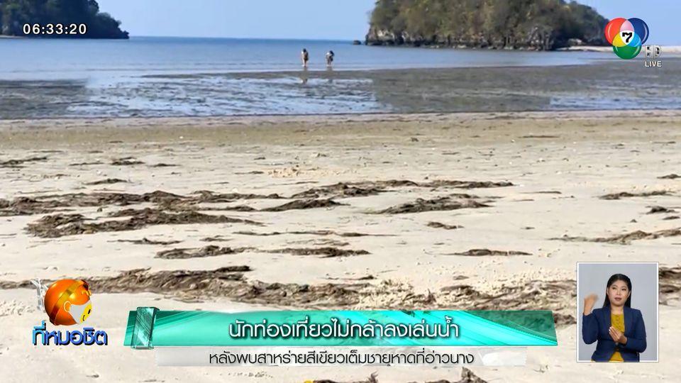 นักท่องเที่ยวไม่กล้าลงเล่นน้ำ หลังพบสาหร่ายสีเขียวเต็มชายหาดที่อ่าวนาง