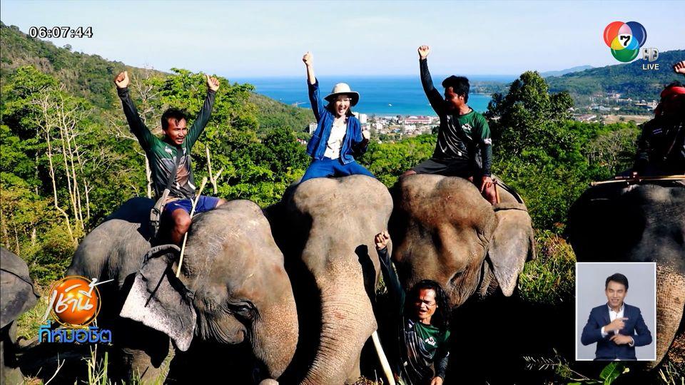 เช้านี้วิถีไทย : ปางช้าง กมลา ภูเก็ต ปรับตัวหารายได้ ลากไม้ยางพารา สู้โควิด-19