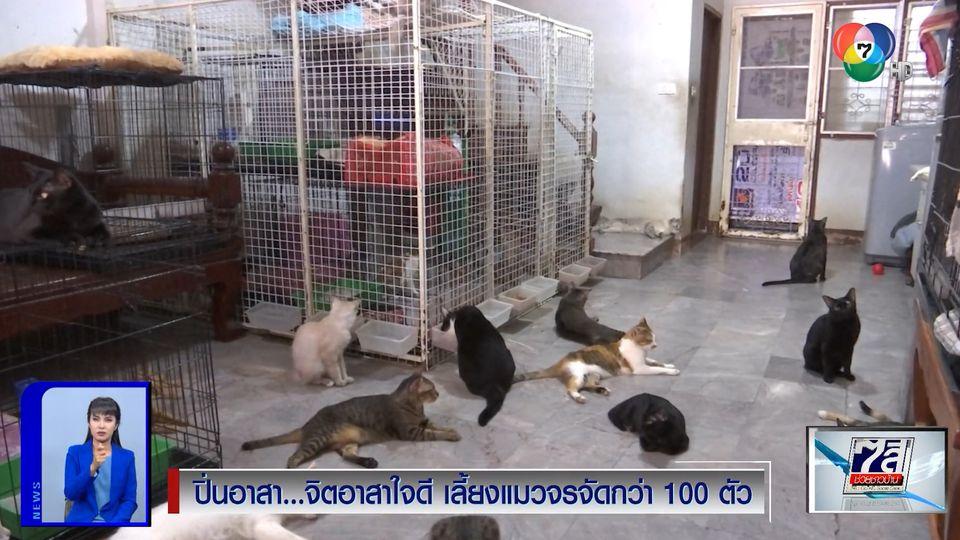 ปิ่นอาสา : จิตอาสาใจดี เลี้ยงแมวจรจัดกว่า 100 ตัว