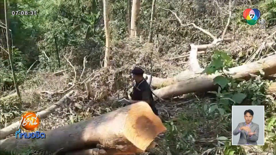 เร่งเอาผิดอดีตนายตำรวจใหญ่ หลังพบรุกป่าต้นน้ำเขาพนมเบญจา จ.กระบี่