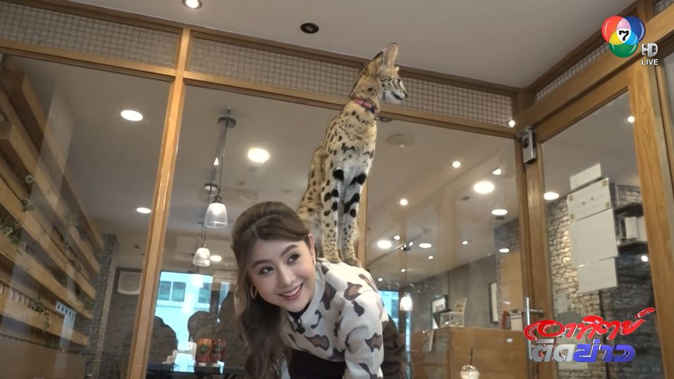 บัวบูชา พาเที่ยว : คาเฟ่สัตว์แปลก สัตว์ป่า