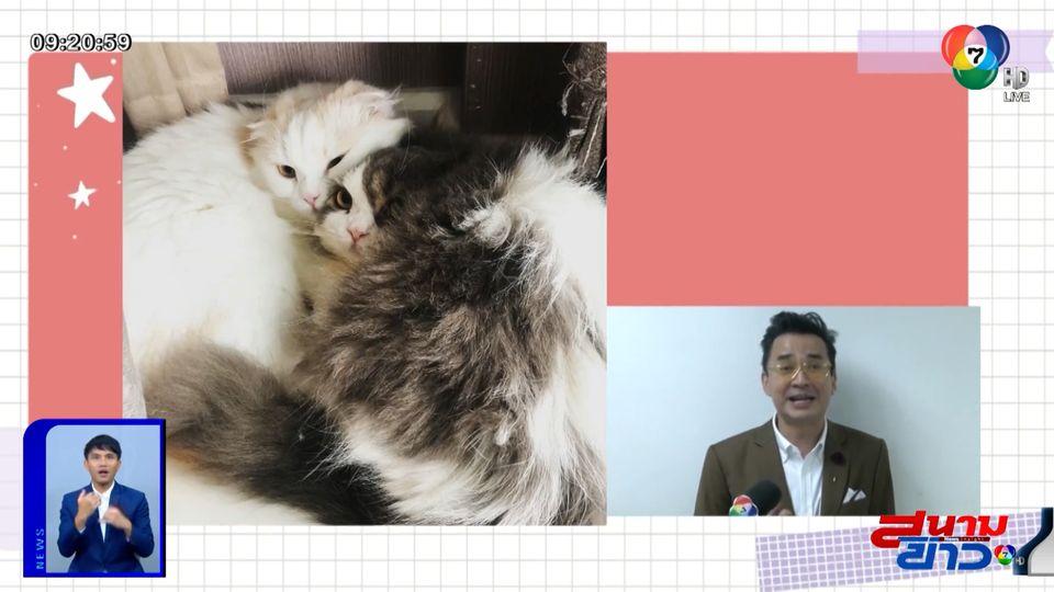 นีโน่ เมทนี เผยความน่ารักของน้องหมา-น้องแมวที่บ้าน อัปเดตอาการป่วยหอบกำเริบ : สนามข่าวบันเทิง