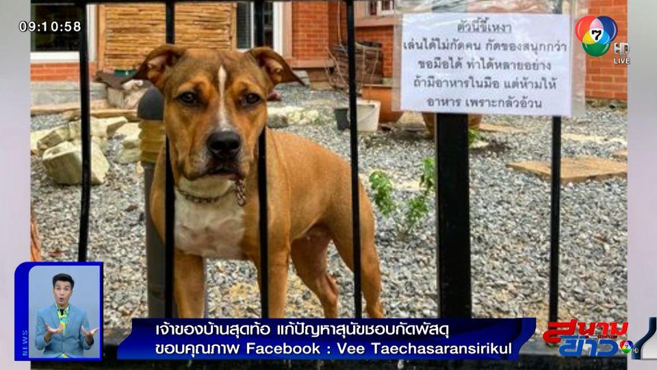 ภาพเป็นข่าว : เจ้าของบ้านสุดท้อ แก้ปัญหาสุนัขชอบกัดพัสดุ