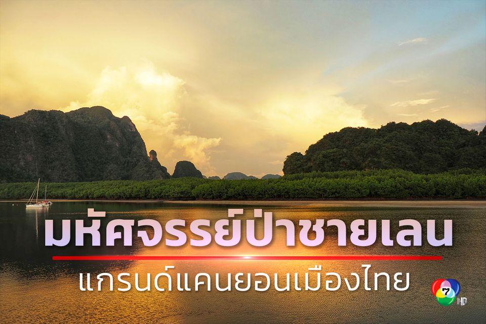 มหัศจรรย์ป่าชายเลน แกรนด์แคนยอนเมืองไทย จ.กระบี่