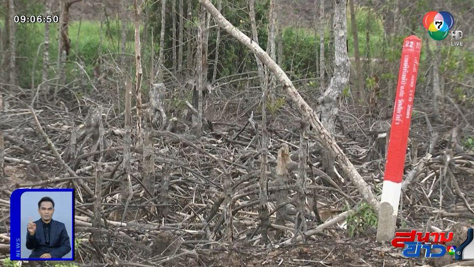 คอลัมน์หมายเลข 7 : ทช. ทวงคืนป่าชายเลนก่อสร้างท่าเทียบเรือ ถาม กรมที่ดิน ไม่คืบหน้า