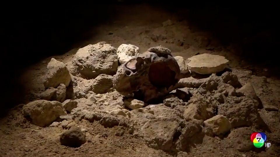 อิตาลีพบฟอสซิลมนุษย์นีแอนเดอธัล อายุ 1 แสนปี
