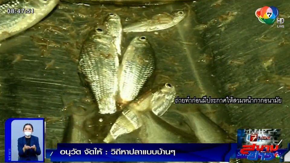 อนุวัตจัดให้ : วิถีหาปลาแบบบ้านๆ