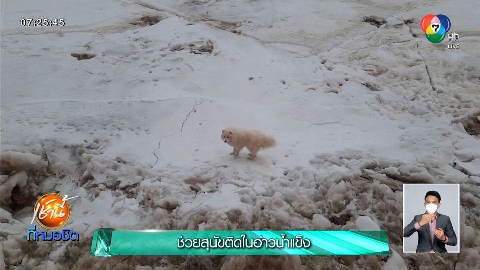 จนท.เร่งช่วยสุนัขติดในอ่าวน้ำแข็ง ในประเทศรัสเซีย