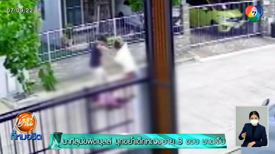 นาทีสุนัขพิตบุลล์ บุกขย้ำเด็กหญิงอายุ 3 ขวบ บาดเจ็บ
