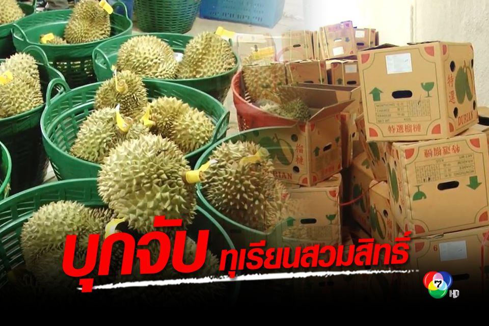 บุกจับรายใหญ่ นำเข้าทุเรียนเวียดนามสวมสิทธิ์เป็นทุเรียนไทย