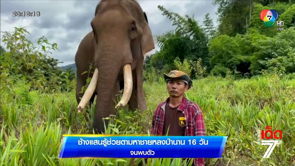 ช้างแสนรู้ช่วยตามหาชายหลงป่านาน 16 วัน จนพบตัว