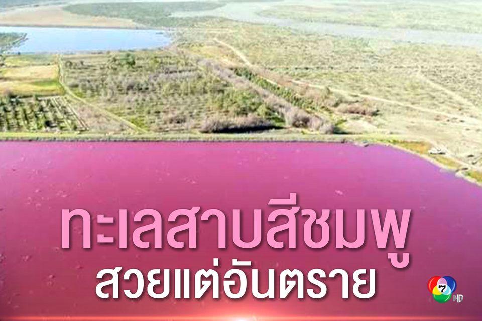 ทะเลสาบแห่งหนึ่งในอาร์เจนตินา เปลี่ยนเป็นสีชมพูเนื่องจากสารเคมีปล่อยมาจากโรงงานประมง