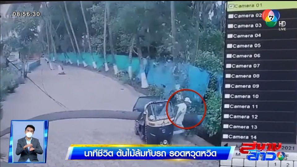 ภาพเป็นข่าว : นาทีชีวิต! ต้นมะพร้าวล้มทับรถสามล้อ คนขับรอดหวุดหวิด