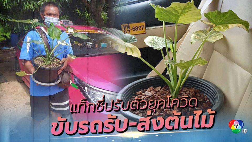 ผู้ประกอบการแท็กซี่ ปรับตัวยุคโควิด รับ-ส่งคนไม่ได้ เปลี่ยนเป็น รับ-ส่ง ต้นไม้แทน!